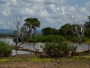 Selous Wildreservat