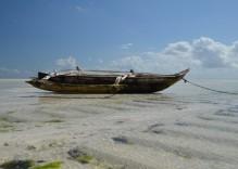 16 Tage Rundreise- Die ganze Welt Tansania