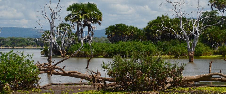 Reisezeit Tansania