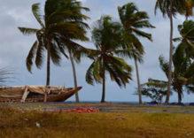 Tansania und Sansibar Reise NOV/DEZ 2015, letzter Teil