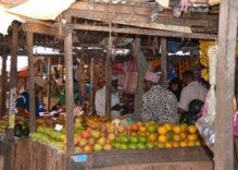 Die Früchte Sansibars